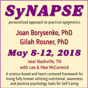 SyNAPSE May 2018