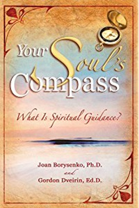Your Soul's Compass What Is Spiritual Guidance? by JOAN Z. BORYSENKO, PH.D.
